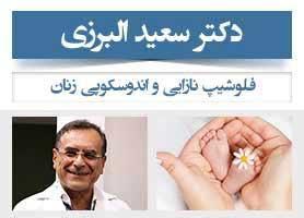 دکتر سعید البرزی - فلوشیپ نازایی و اندوسکوپی زنان