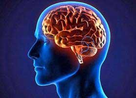 دکتر سلیمان حاتمی زرگران - متخصص بیماری های مغز و اعصاب