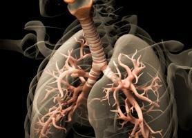 راهکارهای پاکسازی ریه برای تنفس بهتر