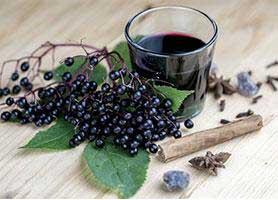 خواص دارویی و معرفی میوه آقطی سیاه