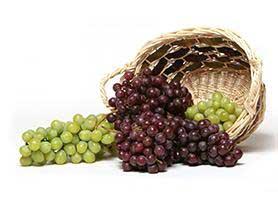 مصرف انگور و پیشگیری از پوسیدگی دندان