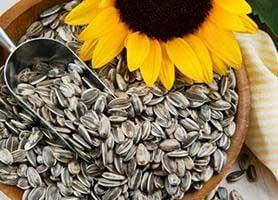 ارزش تغذیه ایی و کالری تخمه آفتابگردان