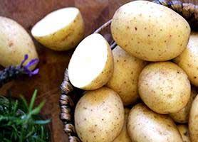 چگونگی درمان بدن با سیب زمینی