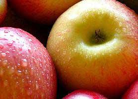 خواص فوق العاده سیب در درمان وسواس و بی حوصلگی