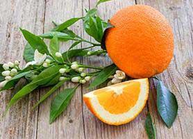 خواص نارنج برای سلامت بدن و عوارض آن