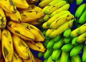 پلانتین چیست؟ خواص و ارزش غذایی پلانتین