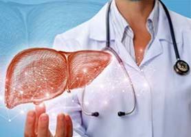 چند درمان خانگی برای کبد چرب