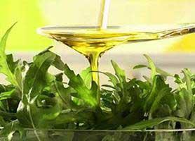خواص ، فواید و مزایای گیاه منداب و اثرات جانبی آن