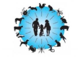 بیماری مشترک انسان و دام