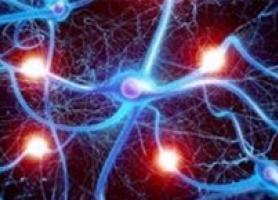 علل تیرگی های موجود در مغز چیست؟