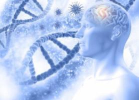 کار متخصص نورولوژی چیست ؟