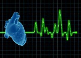 اکوکاردیوگرافی قلبی چیست ؟
