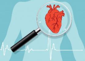 تست های الکتروفیزیولوژیک قلب چیستند؟