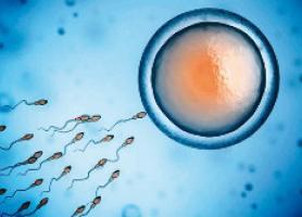درمان ناباروری با آی وی اف،مراقبت،شانس بارداری و عوارض