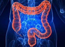 انواع پرولاپس رکتوم علت علائم تشخیص و درمان