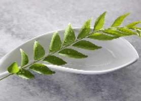 داروی گیاهی برای مبارزه با کرونا