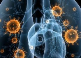 علائم نشان دهنده تاثیر کرونا بر ریه ها