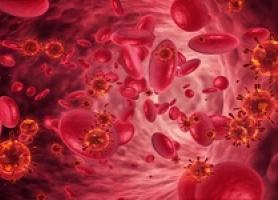 دلایل شیوع کم خونی در میان بانوان