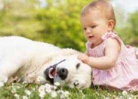 حیوان خانگی برای کودکان، آری یا نه؟