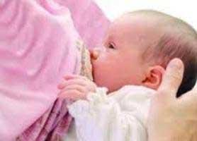 چند خوراکی مفید جهت افزایش شیر مادر