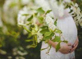 گیاهانی که باید در دوران بارداری مصرف کنید