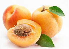 خواص زردآلو : ۲۷ فایده زردآلو برای سلامتی، پوست و مو