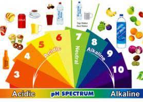 مهم ترین مواد غذایی قلیایی چه چیزهایی هستند؟