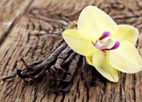 خواص وانیل برای سلامتی و زیبایی