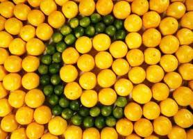 منابع و میزان مصرف ویتامین C